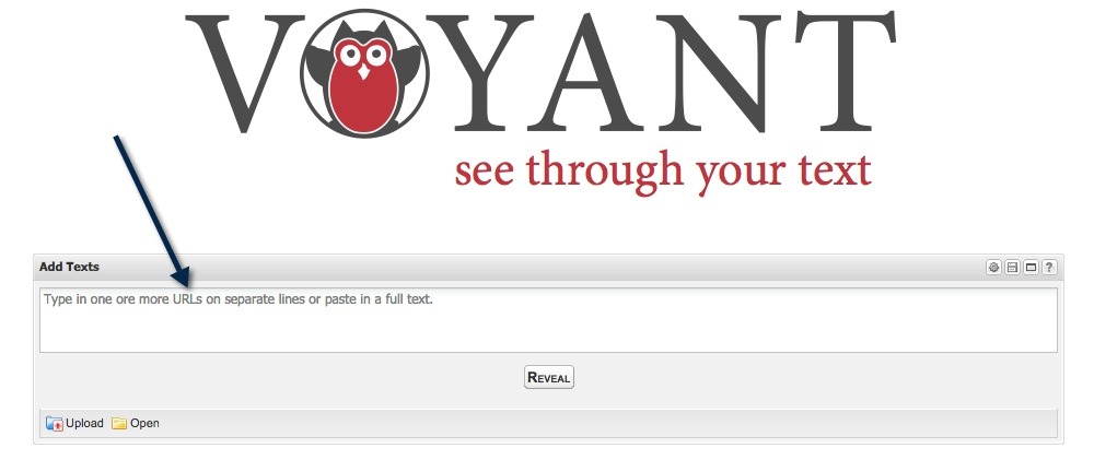Voyant Home page