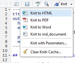 knitr-menu